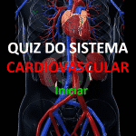 Instruções do Sistema Cardiovascular
